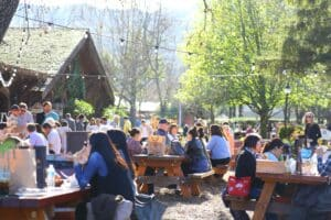 A large crowd siting at picnic tables in Napa Valley